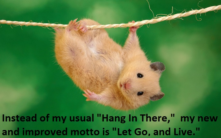 Err, Hang In There